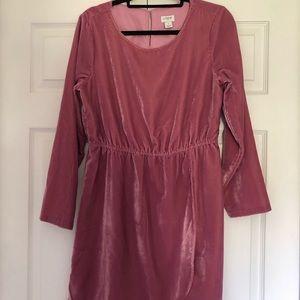 J. CREW // Blush Velvet Dress